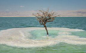 მკვდარი ზღვა - ისრაელი